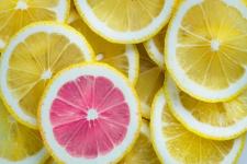 살라미 분할(salami slicing: 연구 분책술)의 위험 - 출판의 양이 아닌 질에 초점을 맞춰라